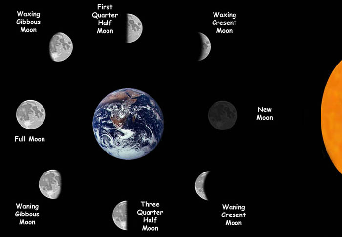 Fish by moon phases.