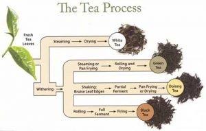 Tea health benefits for you.